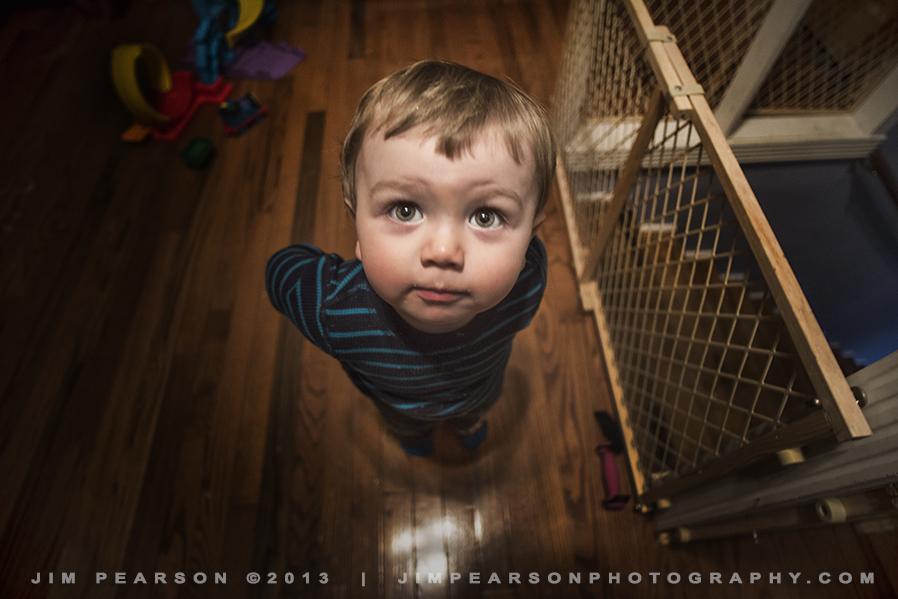 February 2, 2014 – 52 Week Challenge – Looking Up