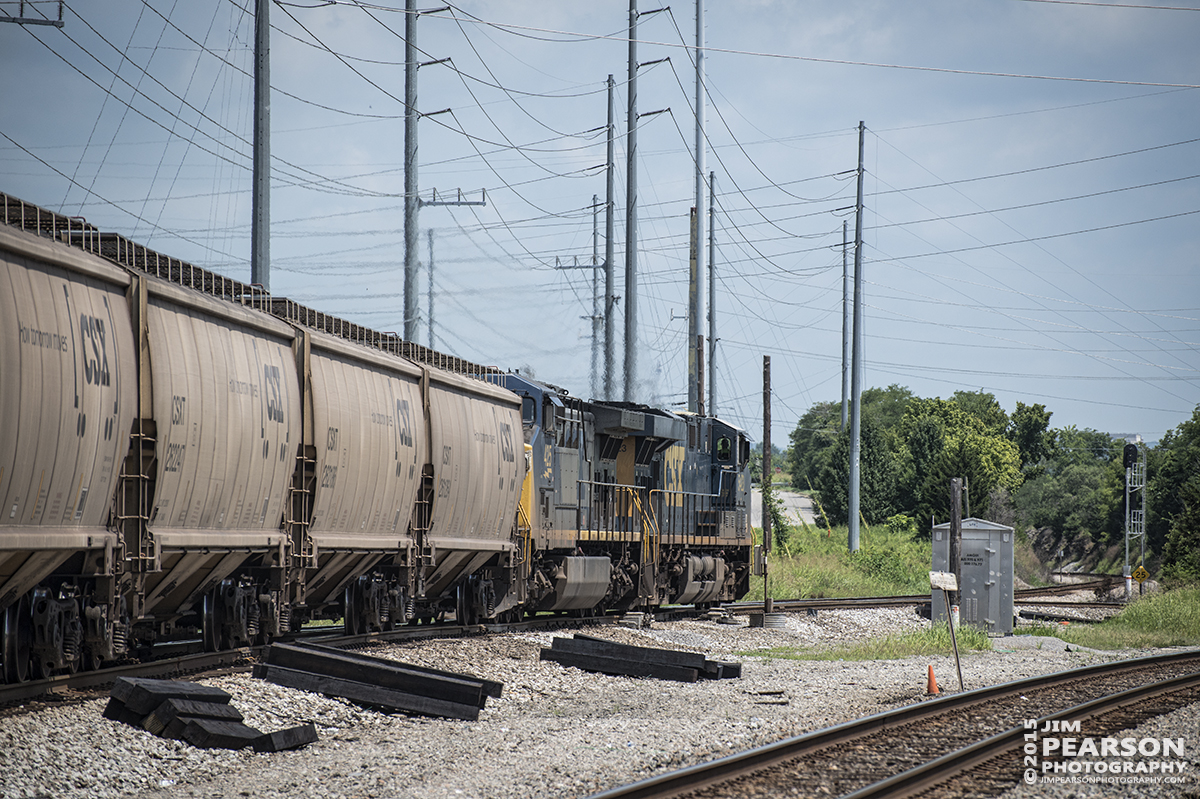 July 16, 2015 - CSX engine 5423 leads an empty grain train onto the CSX's Henderson subdivision as it heads north at Amqui, Tn. This is the start of the Henderson Sub, or the end, depending which view you take. - Tech Info: 1/1600sec, f/5, ISO 250, Lens: Nikon 70-300 @ 180mm with a Nikon D800 shot and processed in RAW.