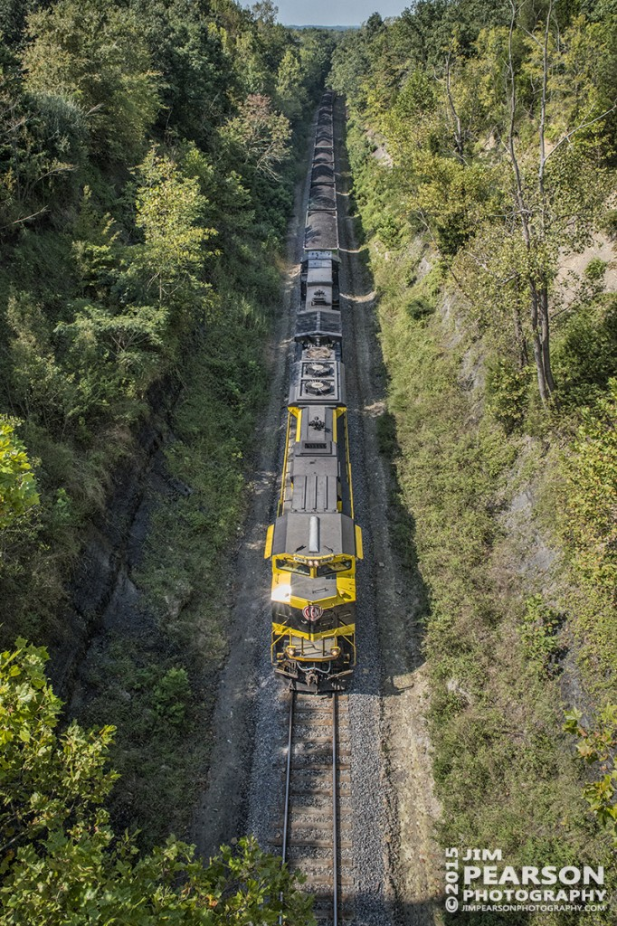 August 28, 2015 - A glint of sunlight reflects off Norfolk Southern's Heritage unit 1069, The Virginian, as it heads north just outside Rockport, Ky on the Paducah & Louisville Railway with it's loaded coal train. – Tech Info: 1/1250sec, f/13, ISO 4000, Lens: Sigma 24-70 @ 24mm with a Nikon D800 shot and processed in RAW.