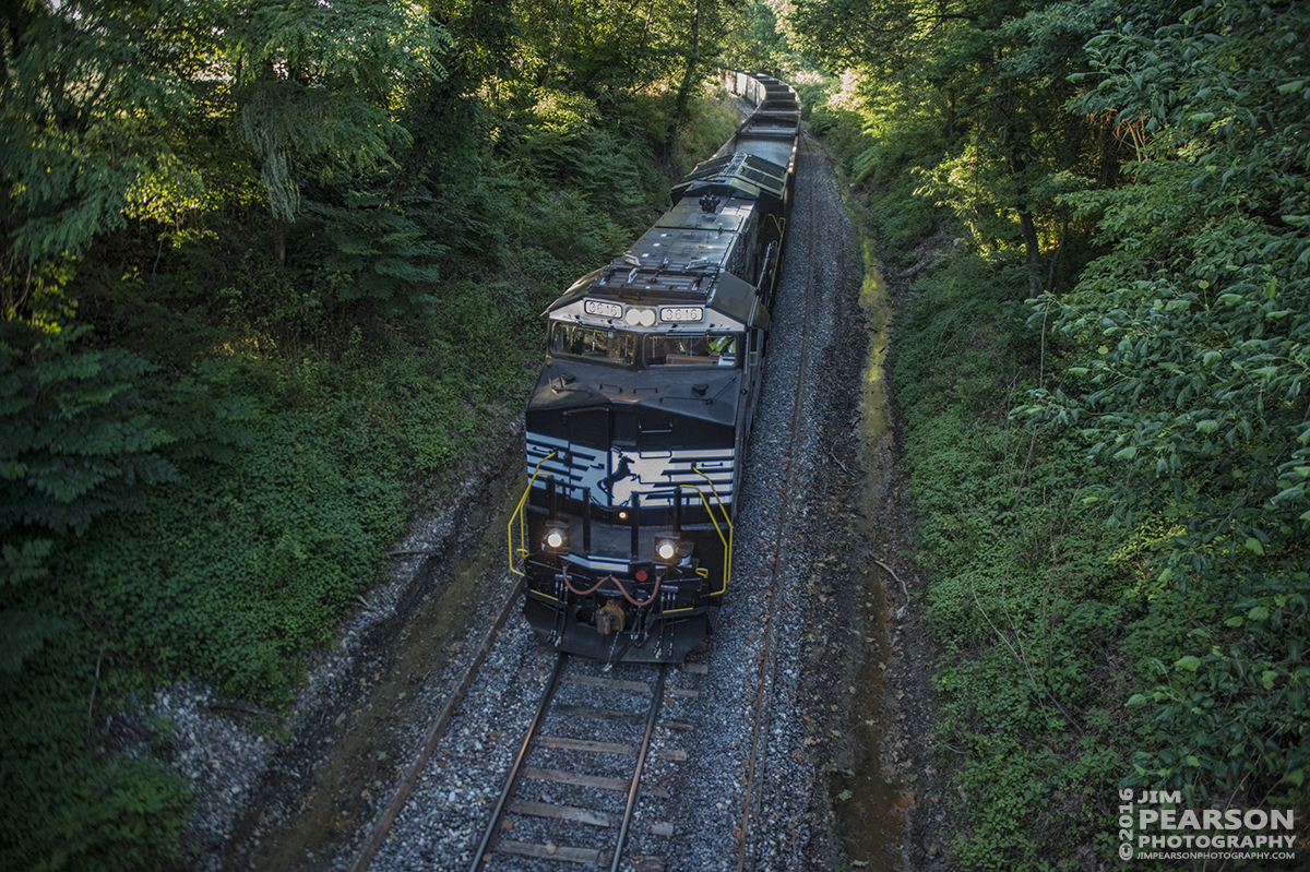 June 8, 2016 – Paducah and Louisville Railway LSX1 pulls its Norfolk Southern Train down the Pee Vee Spur as it heads to Warrior Coal in Madisonville, Ky with a brand new 3616 Tier 4 ET44AC leading on its first revenue run. - Tech Info: 1/640 | f/2.8 | ISO 4000 | Lens: Sigma 24-70 @ 24mm with a Nikon D800 shot and processed in RAW.