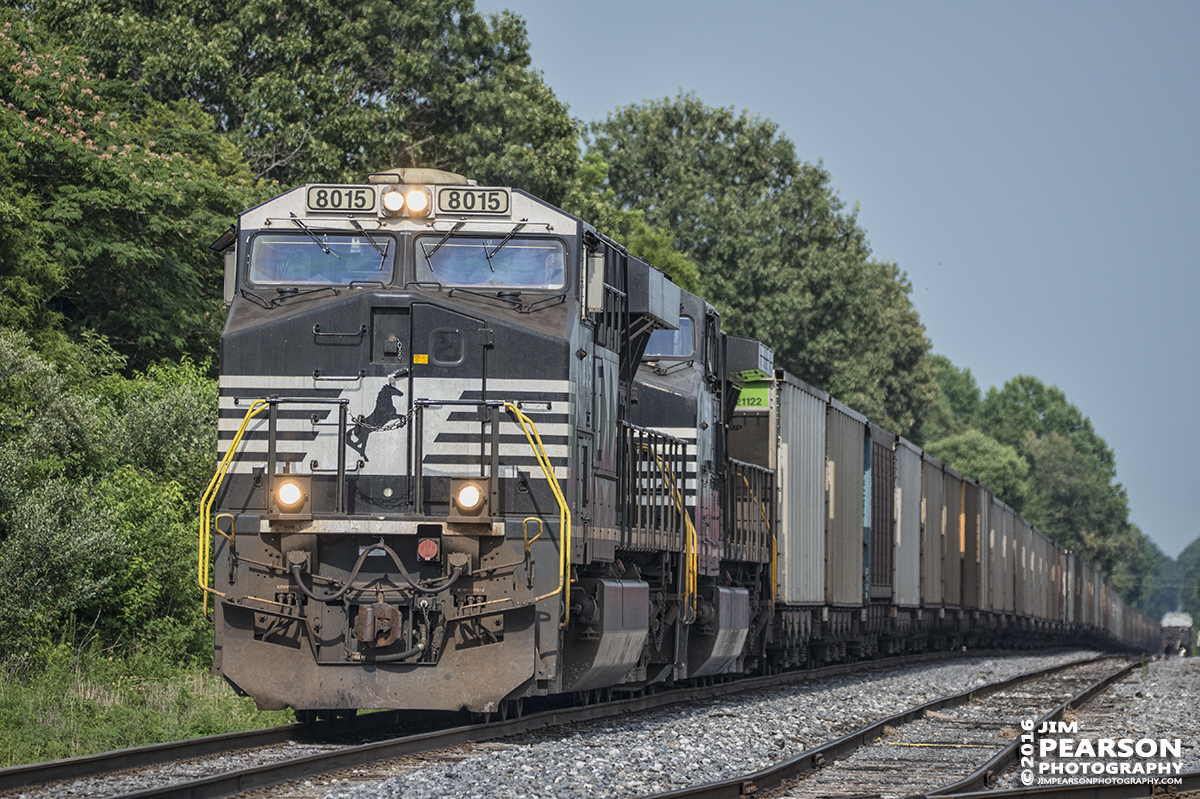 July 18, 2016 – Norfolk Southern empty coal train, with 8015 leading, sits on the main at Paducah and Louisville Railways West Yard at Madisonville, Ky. They were waiting for a MOW worker to finish working on the Pee Vee Spur switch so they could head to Warrior coal to pickup their load. - Tech Info: 1/2500 | f/5.3 | ISO 560 | Lens: Sigma 150-600 @ 220mm with a Nikon D800 shot and processed in RAW.