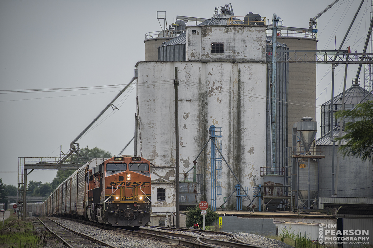 July 22, 2016 – CSX empty intermodal Q230-22 heads north on the Mainline Subdivision as it passes the Perdue Grain & Oilseed  Grain Elevator at Franklin, Ky, with BNSF 8201 leading the way. - Tech Info: 1/1250 | f/5 | ISO 140 | Lens: Nikon 70-300 @ 170mm with a Nikon D800 shot and processed in RAW.