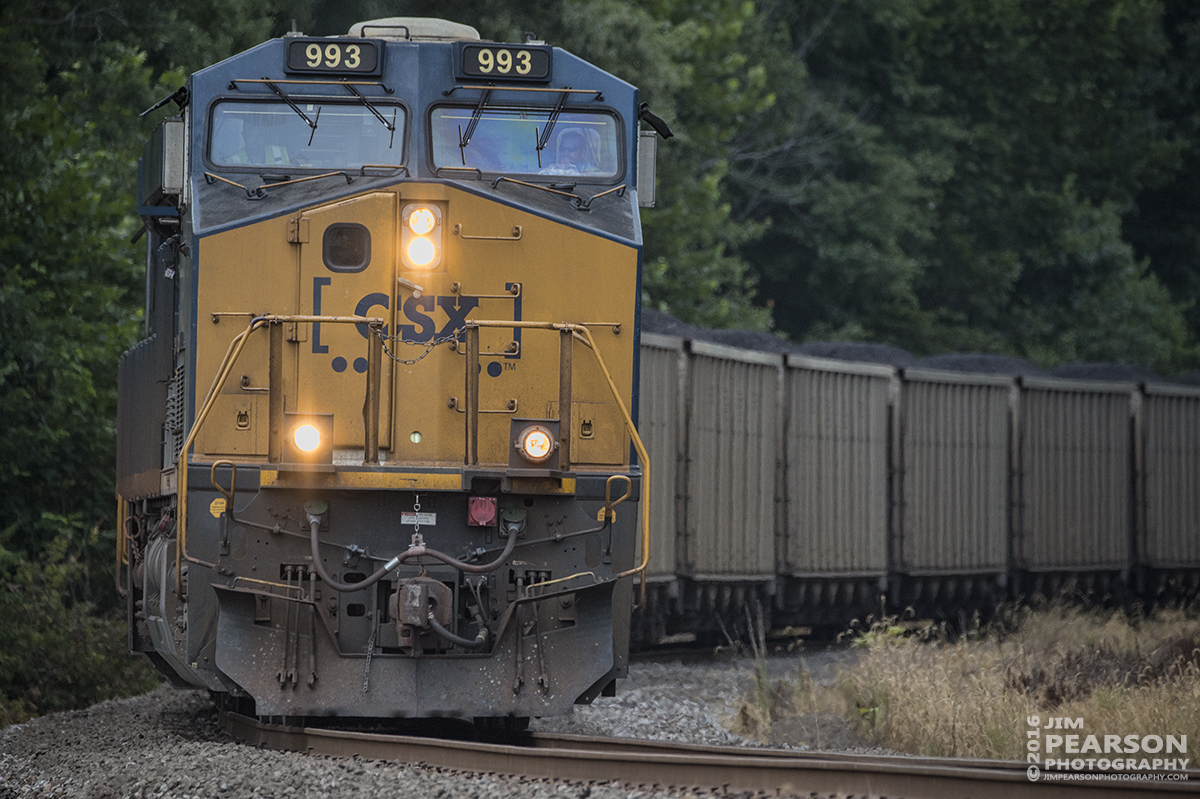 August 5, 2016 – CSX loaded coal train N311-02 pulls off the Earlington Cutoff onto the main at Mortons Gap, Ky as it makes its way south on the Henderson Subdivision. - Tech Info: 1/3200 | f/6 | ISO 1800 | Lens: Sigma 150-600 @ 440mm with a Nikon D800 shot and processed in RAW.